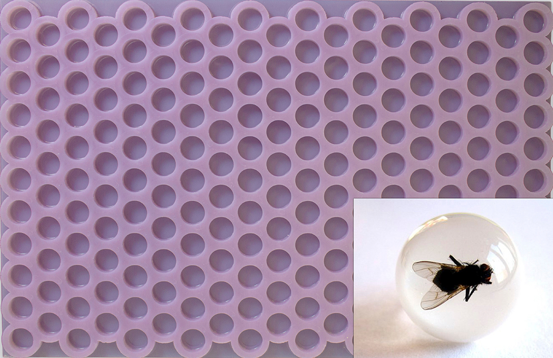 Eezesolutions-custom-silicone-molds-for-encapsulation
